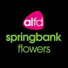 Springbank Flowers